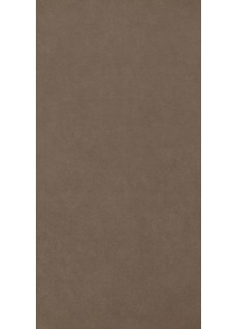 Dlažba Intero Brown Gres Rekt. Mat. 29,8x59,8