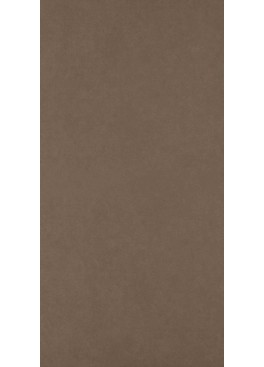 Dlažba Intero Brown Gres Rekt. Mat. 59,8x119,8